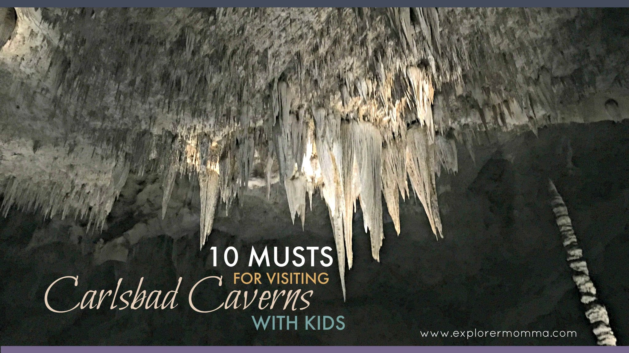 10 Musts for visiting Carlsbad Caverns National Park with kids