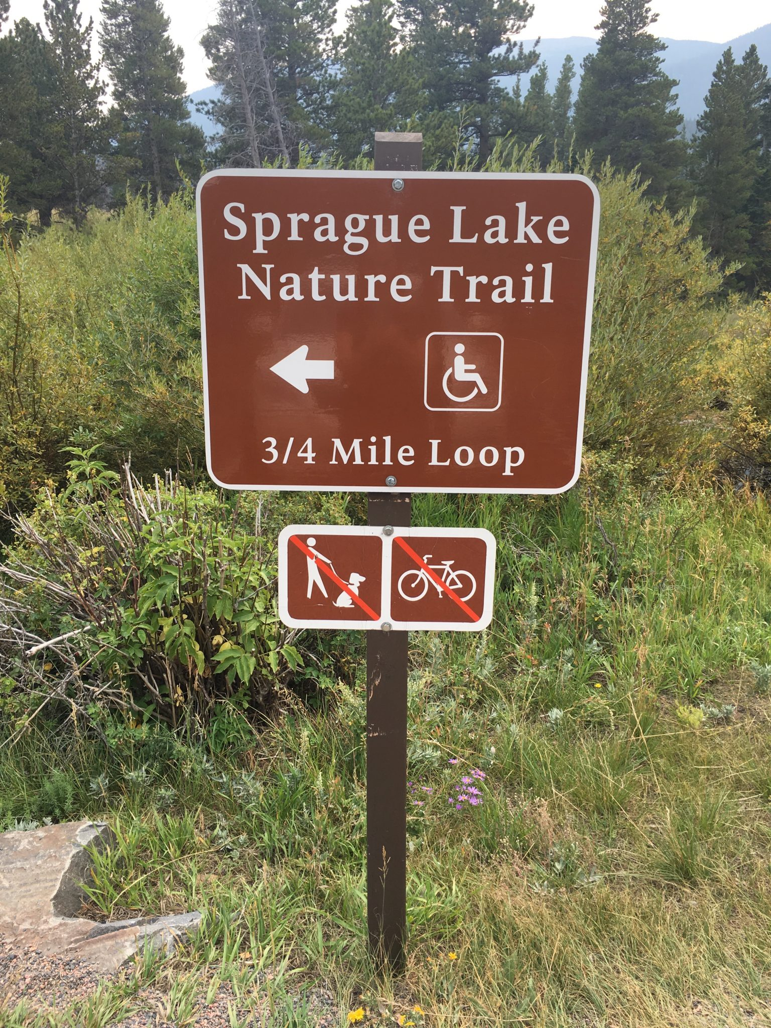 Estes Park hikes for kids, Sprague