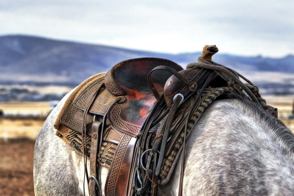Things to do in Ruidoso, New Mexico Saddle