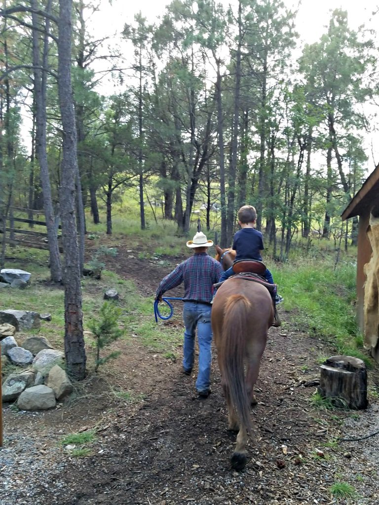 Things to do in Ruidoso, New Mexico horse