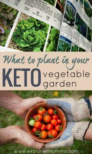 What to plant in your keto vegetable garden
