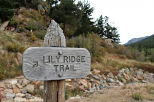 Lily Ridge Trail with free US National Parks pass