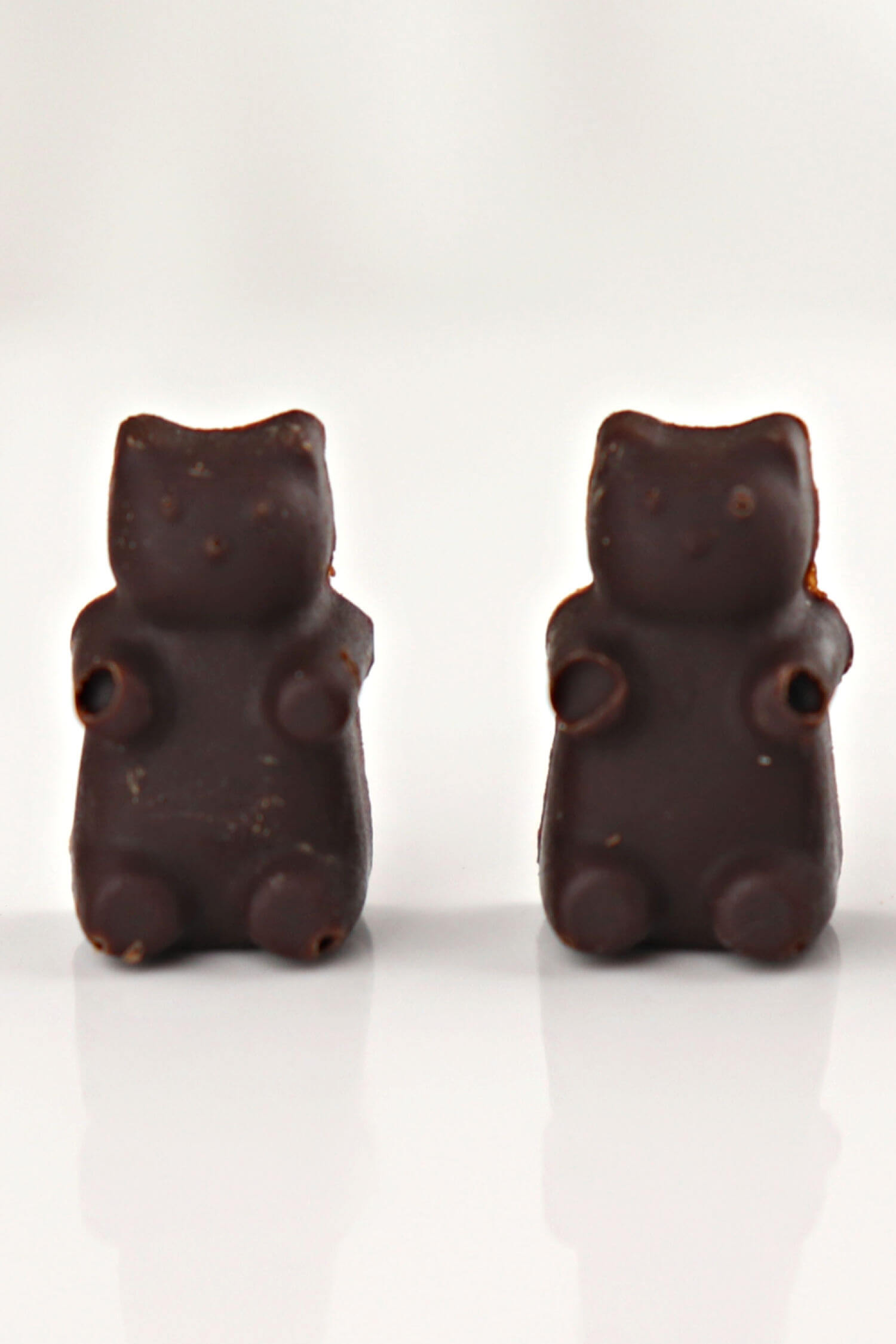 Two keto chocolate bears #ketochocolate #chocolatecraving #lowcarbchocolate