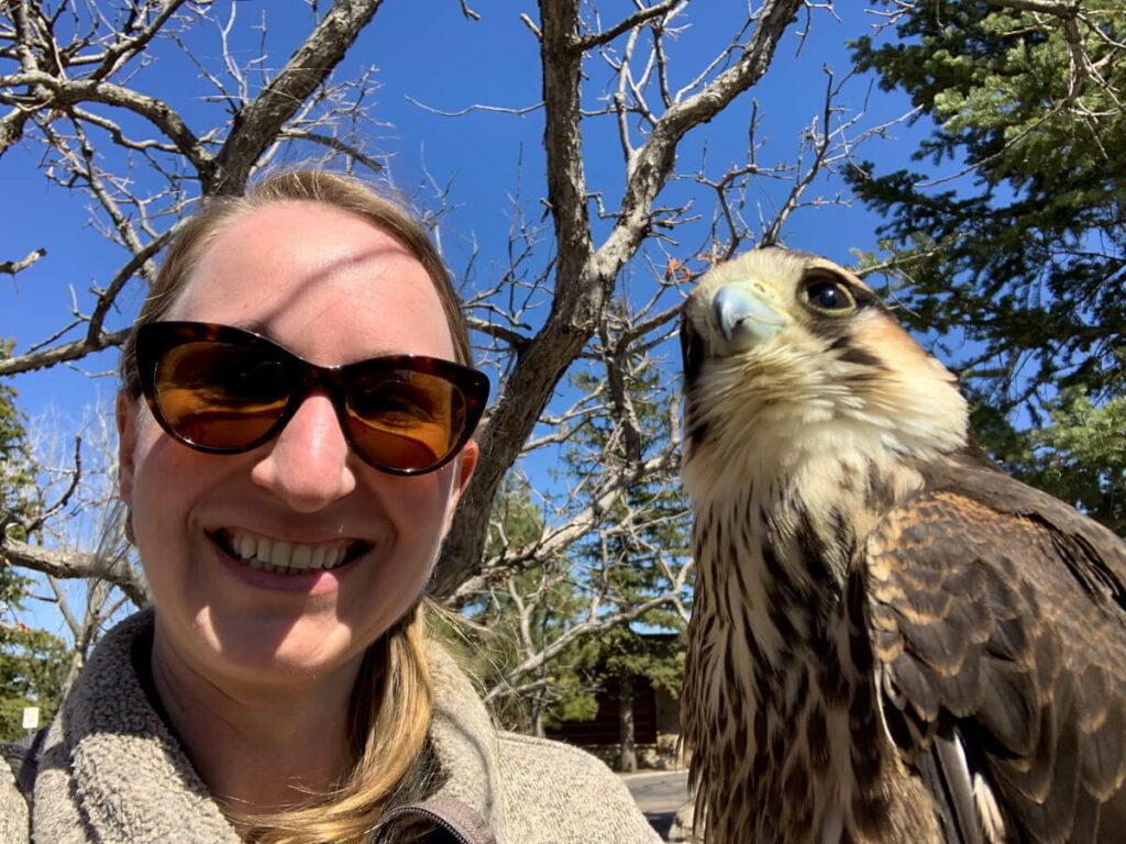 Falcon selfie