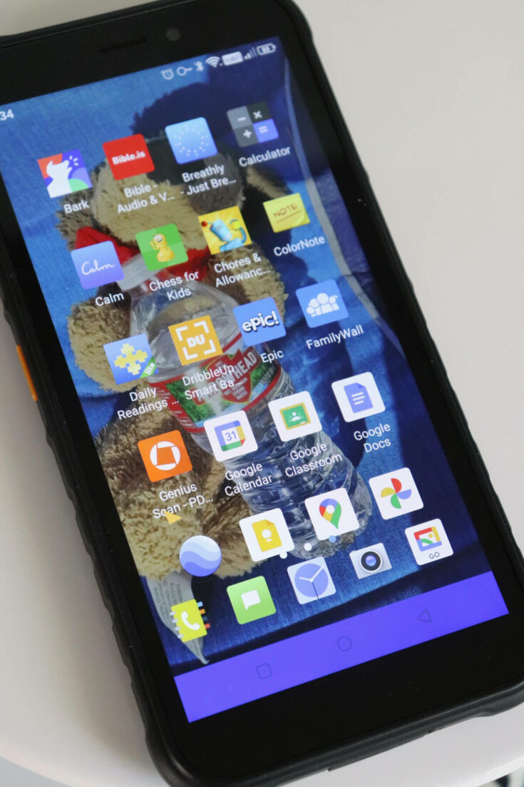 View of apps on phone